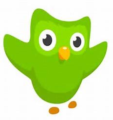 The Duolingo Icon
